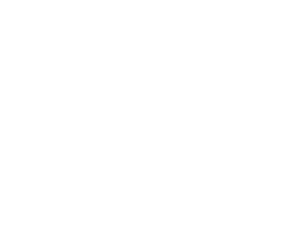 Woodpecker by David Burke Logo