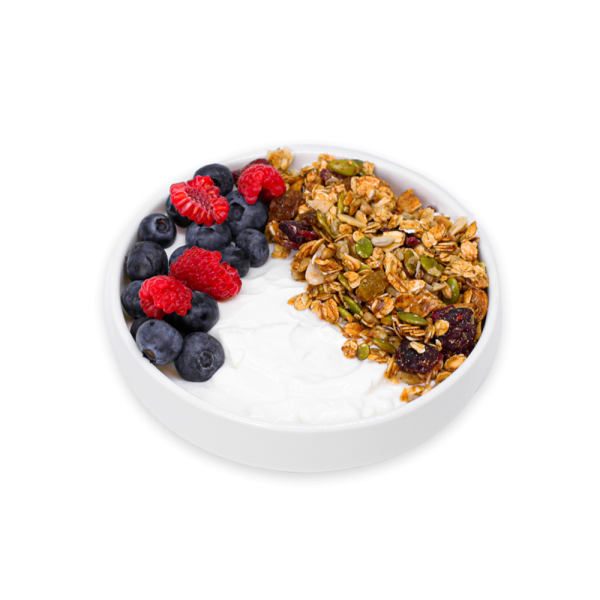 Greek Yogurt in a bowl with berries and granola